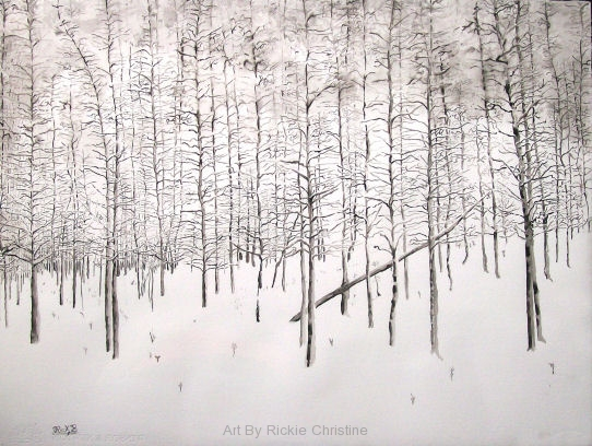 Snow Covered Aspen Grove
